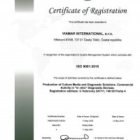 ISO 9001:2015ENG (4)